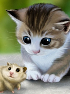 73629-cat-and-mouse