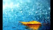 images rain